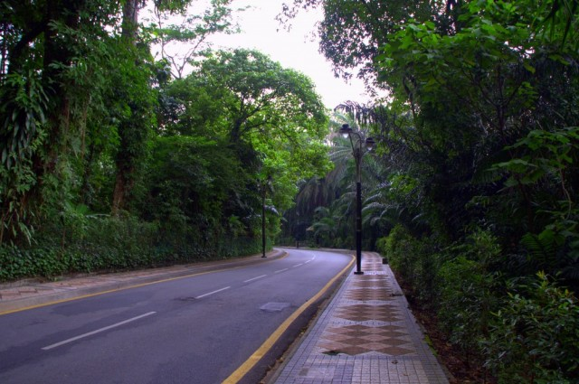 Road to the KL Bird Park